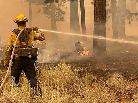 Notfälle: Brände am Lake Tahoe - über 4100 Feuerwehrleute im Einsatz