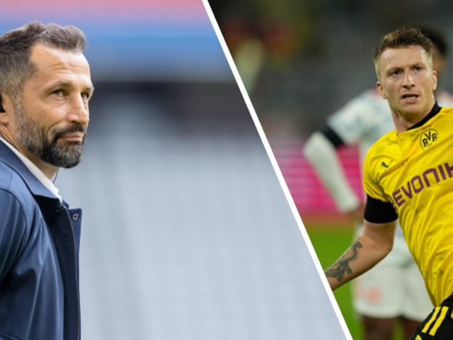 Fußball-Podcast mit Kleiß und Wagner - Im Zwist mit dem BVB macht sich Bayerns Salihamidzic durch Reus-Aussage lächerlich