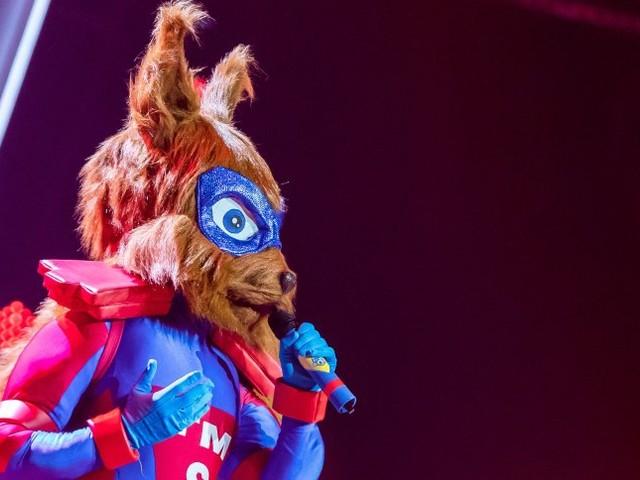 """""""The Masked Singer"""": Das Eichhörnchen ist enttarnt"""