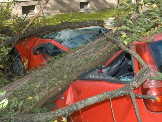 Sturmschäden am Auto: Welche Versicherung zahlt bei Schäden durch Unwetter?