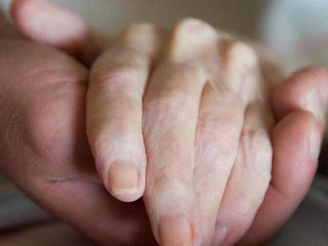 Sorge wächst, dass Sterbehilfe ungeordnet in Kraft tritt