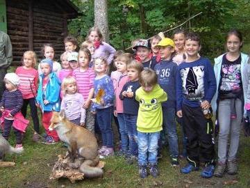 Mit dem Jäger auf Spurensuche im Wald