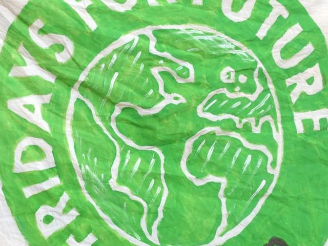 Fridays for Future: Klimastreik wird in Wien spürbar sein