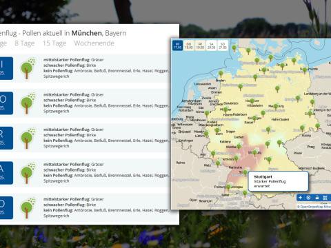Achtung, Heuschnupfen! Pollenflugkarte zeigt gefährdete Gebiete