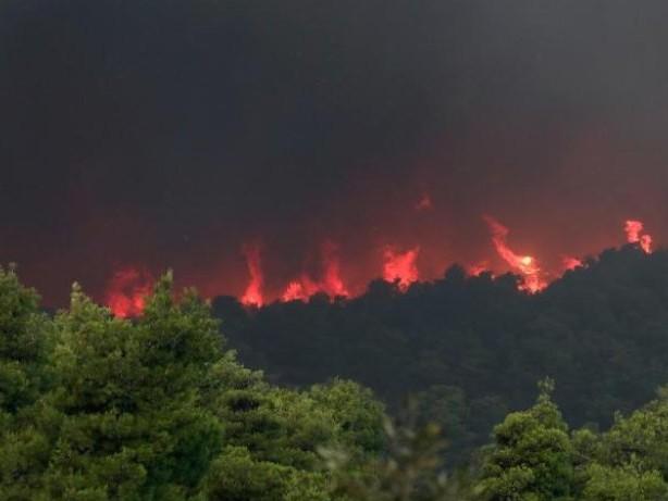 Waldbrandgefahr in Südeuropa: Touristen sollten sich über Waldbrandgefahr informieren