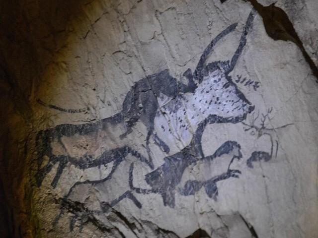 Menschheit wanderte schon früher als gedacht auf andere Kontinente