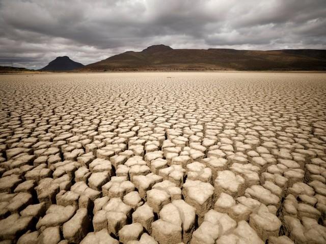 Nachhaltigkeit als Wirtschaftsmotor: Gäbe es den Klimawandel nicht - man müsste ihn erfinden