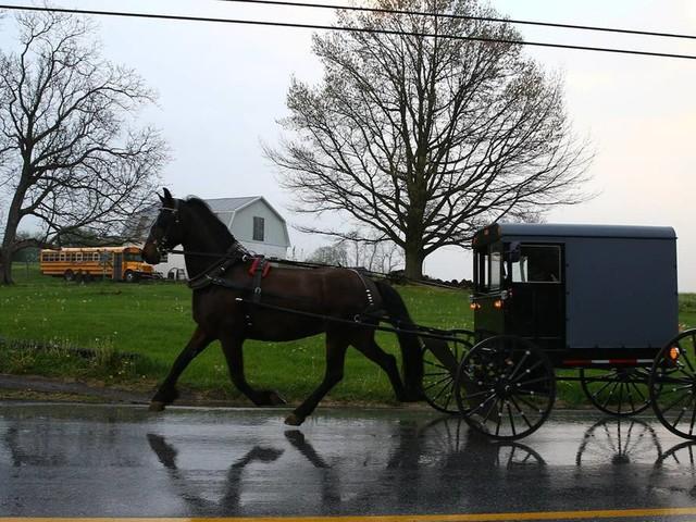 USA: Soundsystem und Bierkästen – so stoppte die Polizei eine Amish-Kutsche