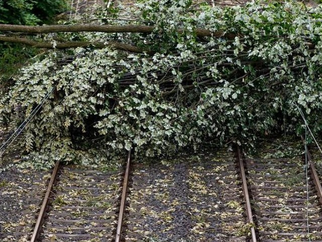 Bahnstrecken durch Unwetter lahmgelegt - Sturmschäden zwingen 200 Reisende zu Übernachtung in ICEs