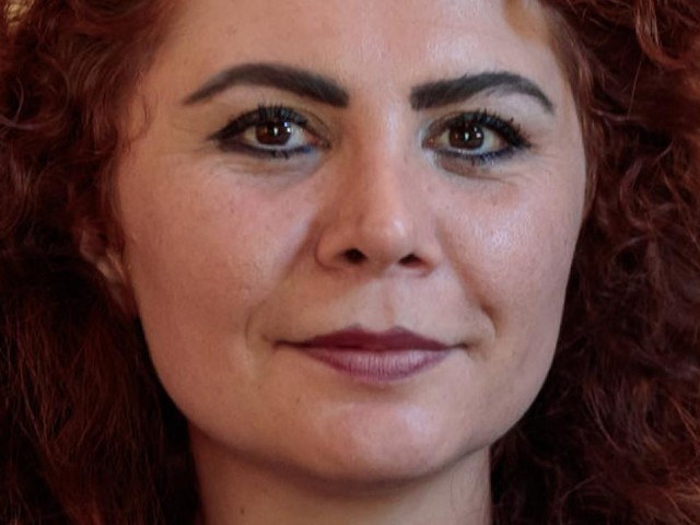 """Erdoğans Politik ist """"nicht anderes als Faschismus"""""""