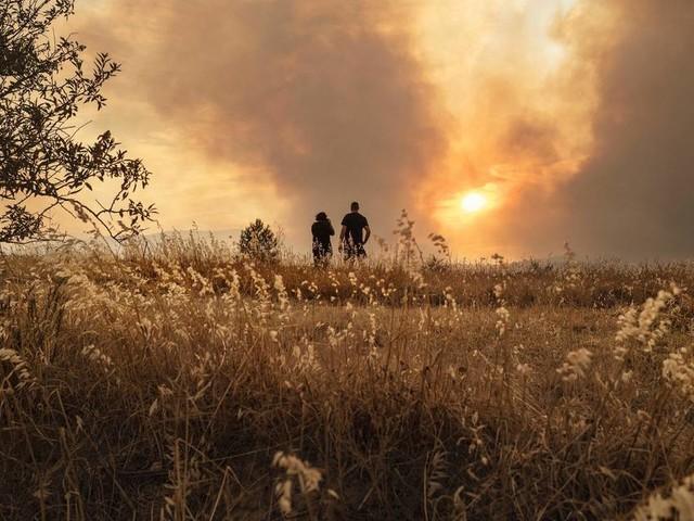 Feuer in Italien, Griechenland, Türkei: Urlaubsländer leiden unter Gluthitze und Waldbränden