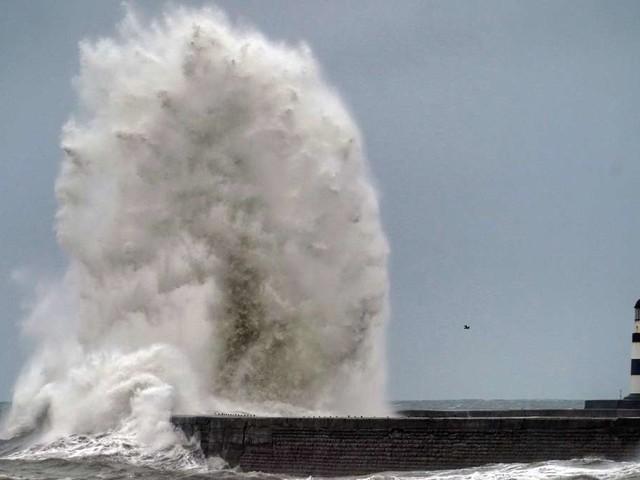 Wetter: Sturm zieht über Deutschland - DWD warnt vor Unwettern