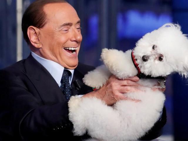 Salvini und Berlusconi inszenieren sich als Tierliebhaber