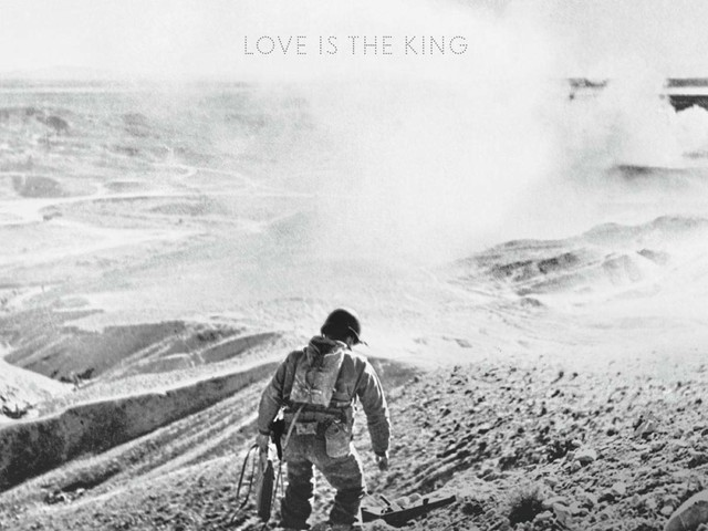 Review: Jeff Tweedy :: Love Is The King