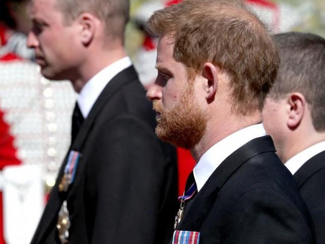 Prinz Harrys und Prinz Williams gemeinsam geschmiedete Geheimpläne