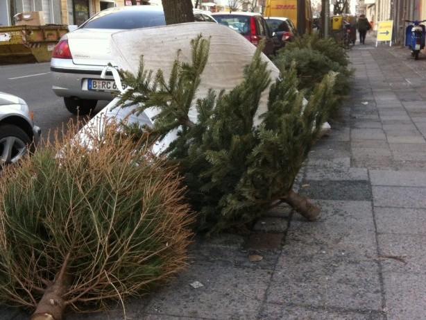 Straßenreinigung: So können Sie der BSR herumliegende Weihnachtsbäume melden
