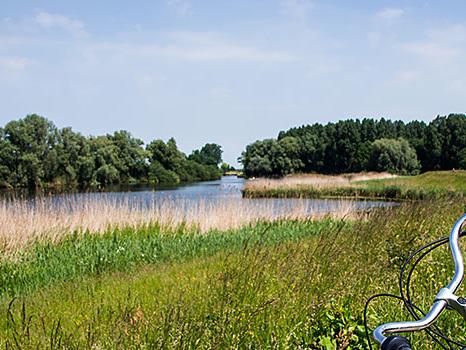 Radeln auf der Hanseroute, mit dem Fahrrad nach Hasselt und Kampen