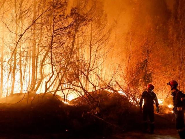 Südeuropa brennt bei Lufttemperaturen bis zu 45 Grad