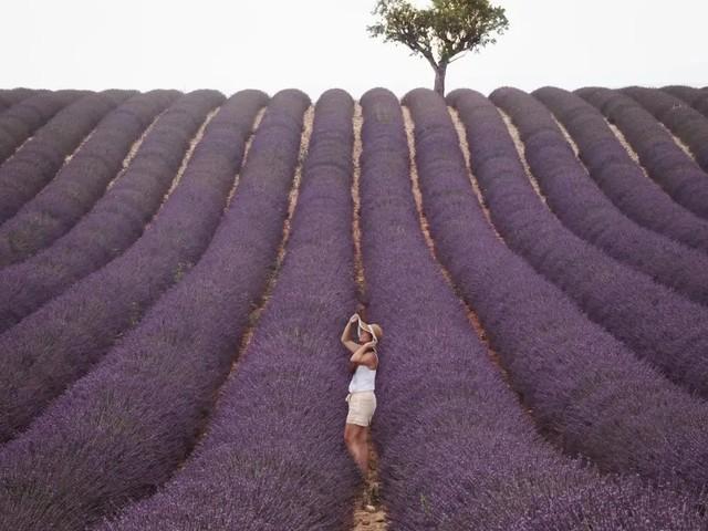 Farbe des Jahres 2023: Digital Lavender