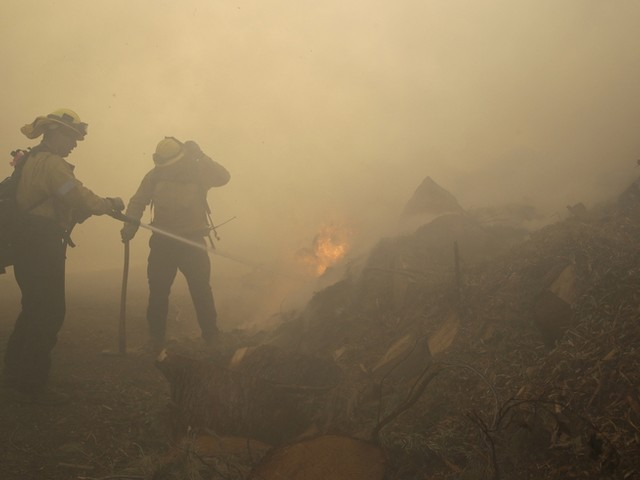 Waldbrände wüten in Kalifornien – die Ursache des Feuers gibt Rätsel auf