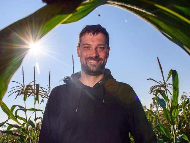 Experimentierfreude: Bunter Popcorn-Mais von den eigenen Feldern