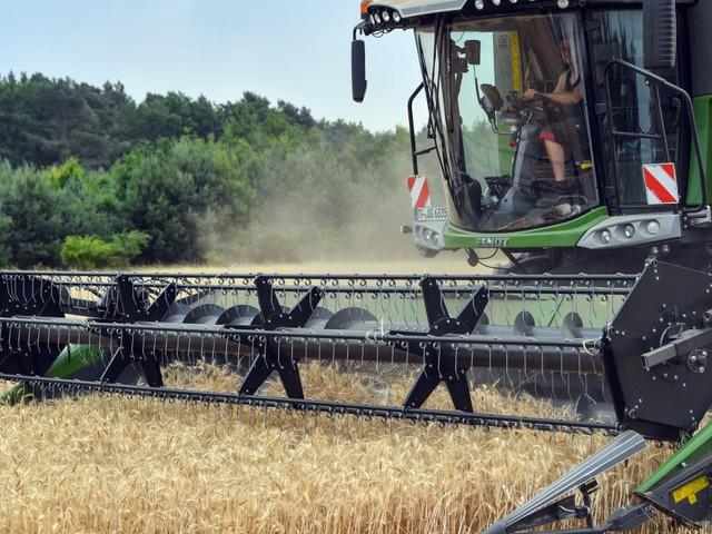 Prognose des DBV: Bauern erwarten größere Ernte als im vergangenen Jahr
