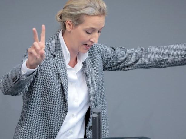 Umfrage: AfD laut Deutschlandtrend zweitstärkste Kraft