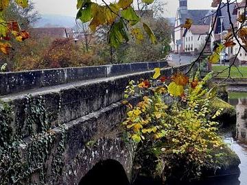 Ein bunter Rahmen aus Herbstblättern