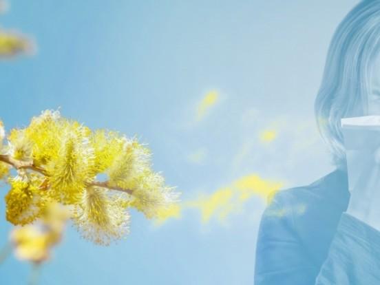 Biowetter Region Bremen heute: Pollenflug aktuell und witterungsbedingter Einfluss auf Ihr Wohlbefinden