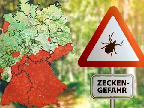 Zecken-Alarm: Das sind die neuen Risikogebiete in Deutschland