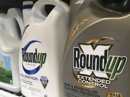 US-Richter senkt Bayer-Strafe in Glyphosat-Prozess deutlich