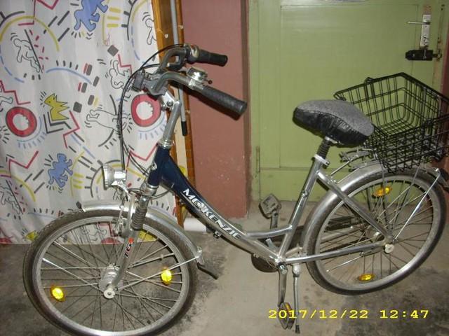 Damen Fahrrad in Duisburg