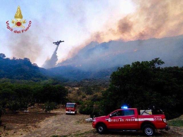 Wetter: Hunderte Waldbrandeinsätze auf Sizilien - Hitze in Südeuropa