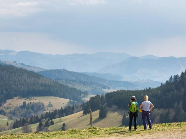 """Schwarzwald: Muss für Tagesausflüge bald ein """"Umwelteuro"""" gezahlt werden?"""