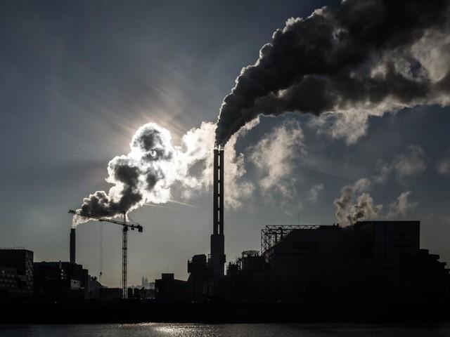 Privatstiftungen für den Klimaschutz