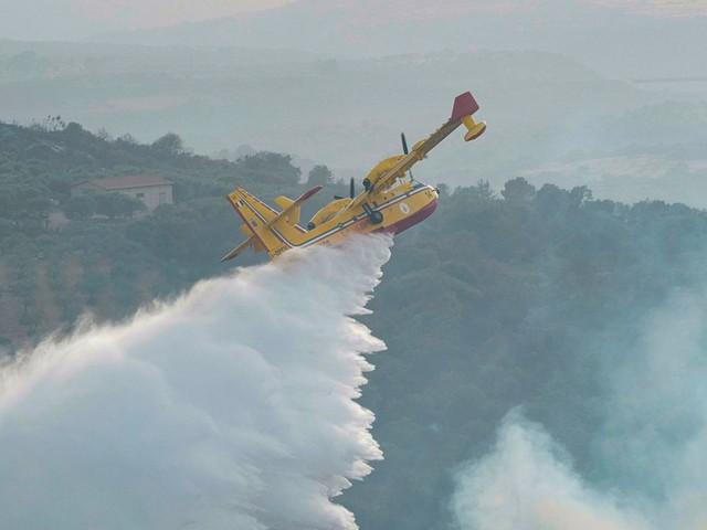Waldbrände in Italien: Rettungskräfte landesweit im Einsatz