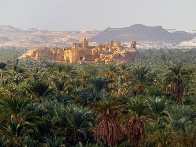 Oase Siwa in Ägypten: Orakel der Wüste