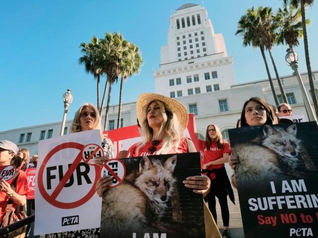 Tierschutz: Los Angeles verbietet Verkauf von Pelzwaren