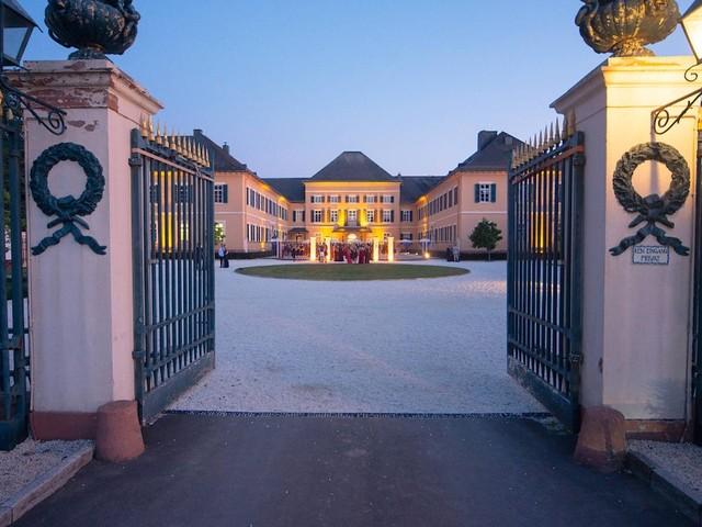 Wieso renommierte Weingüter zunehmend den Rheingau verlassen