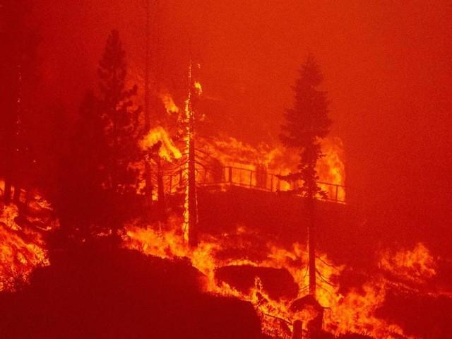 Kalifornien: Waldbrände bedrohen beliebtes Ausflugsgebiet Lake Tahoe