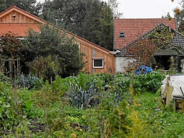 Niederlande: Familie lebte neun Jahre isoliert – Auch Vater festgenommen