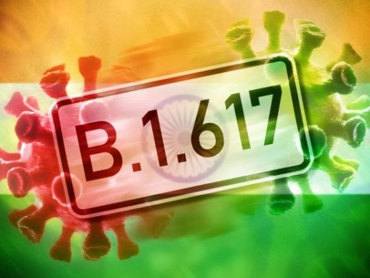 Indische Mutation - Wie gefährlich ist B.1.617?