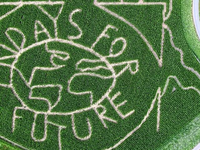 Finance for Future: Sprung aus der Nische für nachhaltiges Anlegen