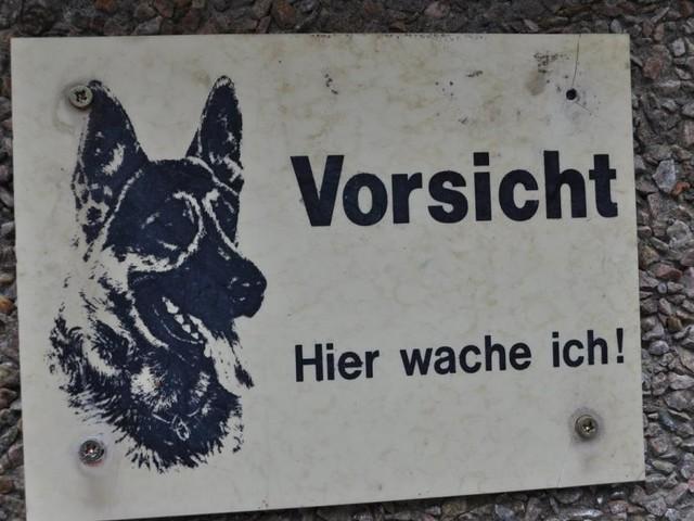 OÖ: Kind von Hund gebissen und schwer verletzt