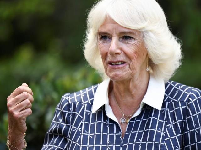 Prinz George: Spitzname für Camilla verrät, was er wirklich von ihr hält