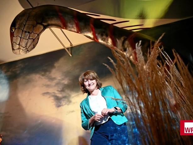 Ausstellung: Von Einhorn bis Yeti: Attendorn zeigt fantastische Wesen