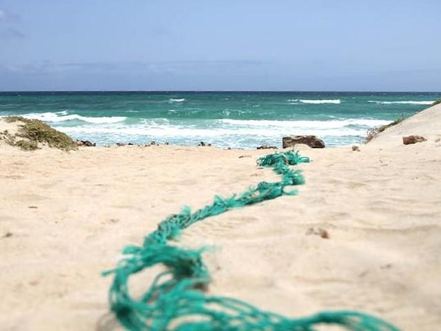 """Kommentar zu Die """"Große Insel-Erlebnistour"""" auf Boa Vista von Timo Weuter"""