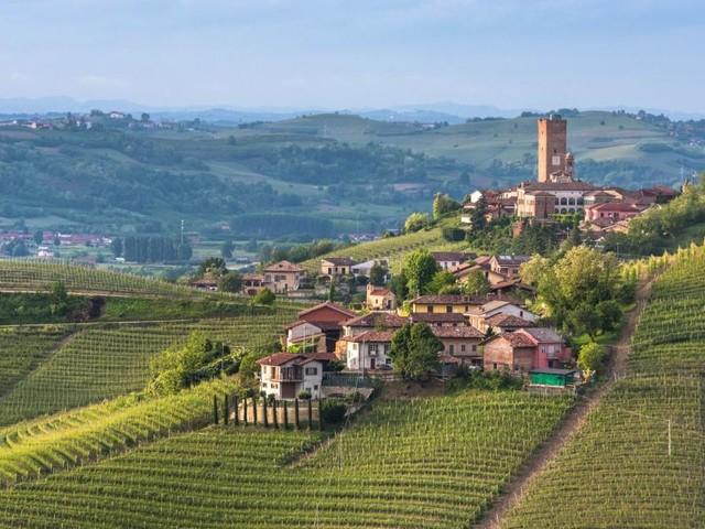Trüffel, Käse und Risotto: Eine Reise zu den Schätzen des Piemonts