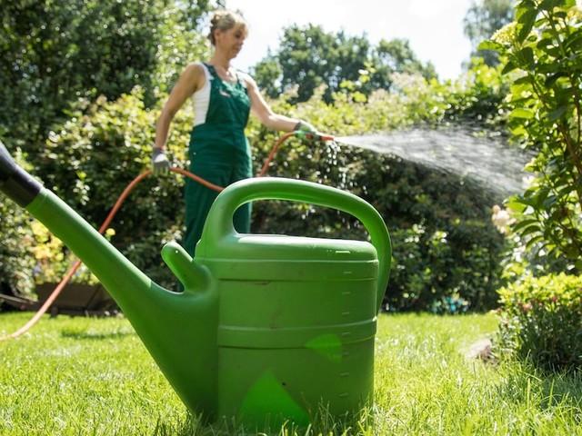 Trinkwasser sparen - Geld und Wasser sparen: Wie Sie Ihren Garten clever wässern