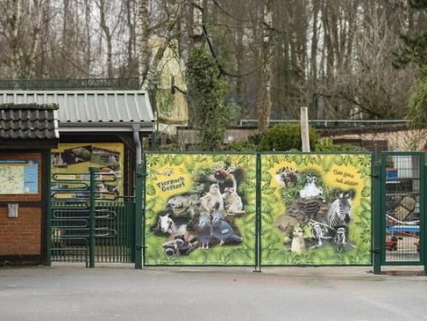 Tiere: Tierparks im Lockdown: Tiere sehnen sich nach Publikum